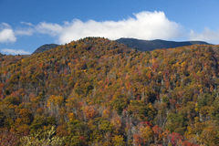 Fall colors as seen from the Blue Ridge Parkway in North Carolina. Stock Photos