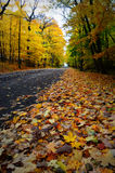 Fall Road royalty free stock images