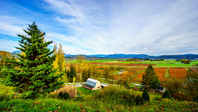 Fall colors of the Blueberry Fields in Glen Valley in the Fraser Valley Stock Image