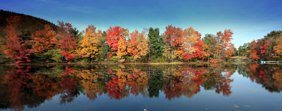 Fall Colors, Brant Lake, NY Royalty Free Stock Photography