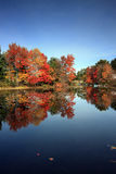 Fall Colors, Brant Lake, NY Stock Images