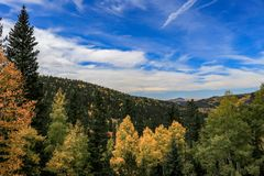Fall colors with bright sky stock image