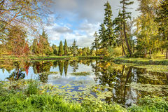 Fall Colors Reflect in Calm Lake. Autumn Colors Reflect in Still Waters of Medina Lake in Medina, Washington stock photos