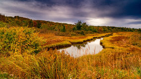 Fall colors Castine Maine. Fall colors at British Canal near Castine, Maine Royalty Free Stock Photos