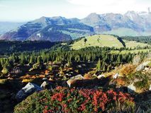 Fall colors on the Churfirsten mountain range, above Lake Walensee royalty free stock photo