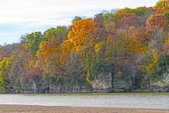 Fall Colors on a Cliff along a River royalty free stock images