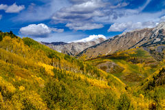 Fall Colors in Colorado Mountains Stock Photos