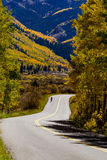 Fall Colors in Colorado Mountains Stock Images