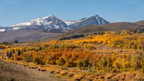 Fall Colors on Conway Summit stock image