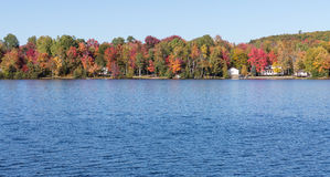 Fall colors in cottage country. Lake with autumn leaves and blue sky royalty free stock photo