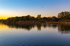 Fall colors at dusk with ripples on the lake. Colorful skyline with birds flying royalty free stock photos
