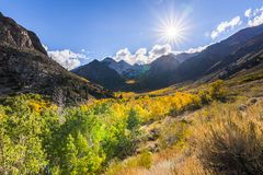 Fall colors in the Eastern Sierras. Fall colors covering McGee Creek valley in Eastern Sierra mountains, California royalty free stock images