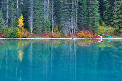 Fall colors in Emerald Lake, Yoho National Park Royalty Free Stock Photography