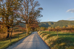 Fall colors on enchanted road at Smoky Mountains National Park during sunset with focus on trees Stock Image