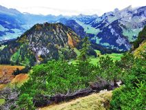 Fall colors in forests of Alpstein mountain range and Thur River valley stock images