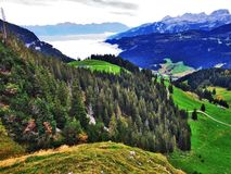 Fall colors in forests of Alpstein mountain range and Thur River valley royalty free stock photo