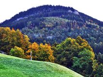 Fall colors in forests of Alpstein mountain range and Thur River valley. Canton St. Gallen, Switzerland stock image