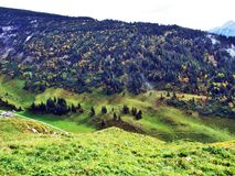 Fall colors in forests of Alpstein mountain range and Thur River valley. Canton St. Gallen, Switzerland stock photos