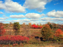 Fall colors in Frontenac state park Royalty Free Stock Photo