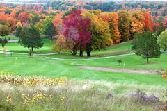 Fall colors in golf course Royalty Free Stock Photos