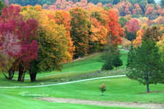 Fall colors in golf course Stock Photography