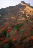 Fall colors, Great Wall of China, Stock Photo