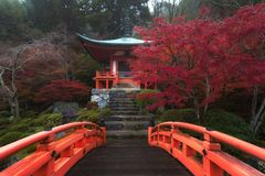Fall colors and heaven at Daigoji temple in Kyoto, Japan. stock image