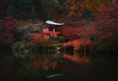 Fall colors and heaven on Earth at Daigoji temple in Kyoto, Japan. After a brisk walk through temples, gardens and the woods, I came across this peaceful scene stock photos