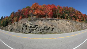 Fall Colors Highway Fisheye stock video