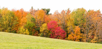 Fall colors and hill Royalty Free Stock Photos