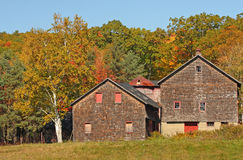 Fall colors on hillside  with old barn Stock Image
