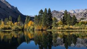 Fall Colors at Intake Lake Bishop California royalty free stock photography
