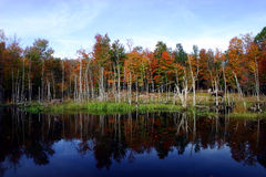 Fall Colors by the Lake. This is a colorful autumnal scene in Quebec, Canada Royalty Free Stock Image
