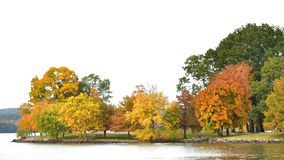 Fall Colors in lake front. Fall Colors at its peak in Arkansas royalty free stock images
