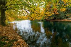 Fall Colors at Laurelhurst Park Portland Oregon Stock Photo