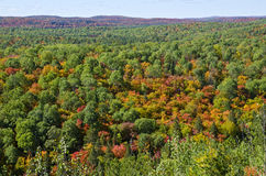Fall Colors From Lookout Trail in Algonquin Park. Beautiful view of colorful trees from Lookout Trail in Algonquin Park, Ontario, Canada royalty free stock photos