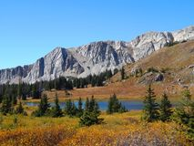 Fall Colors in Medicine Bow Wyoming Royalty Free Stock Photography