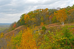 Fall Colors on a MIdwest Bluff Royalty Free Stock Images