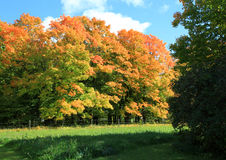 Fall colors in Minnesota Stock Photos