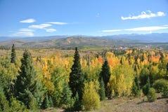 Autumn Colors in Mountain Landscape. Fall colors in mountain landscape in Colorado royalty free stock photos