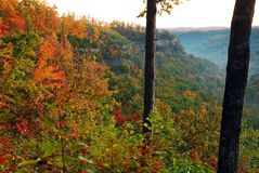 Fall colors on a mountain ridge royalty free stock image
