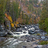Fall colors by mountain stream Royalty Free Stock Photography