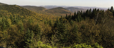 Fall colors from a mountain top. Fall colors as seen from a mountain top Royalty Free Stock Photos
