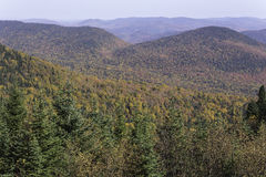 Fall colors from a mountain top. Fall colors as seen from a mountain top Stock Image