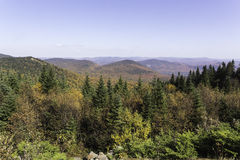 Fall colors from a mountain top. Fall colors as seen from a mountain top Royalty Free Stock Photo