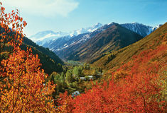 Fall colors of mountains Royalty Free Stock Images