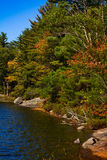 Lake shoreline in fall Royalty Free Stock Photography