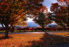 Fall colors in New England royalty free stock images