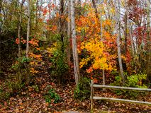 Fall Colors in North Carolina. A beautiful day on the Ararat River in Mount Airy, North Carolina Stock Photos