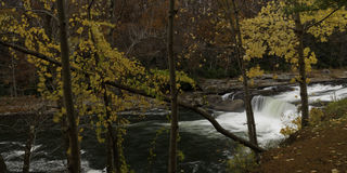 Fall colors at Ohiopyle park Stock Photography